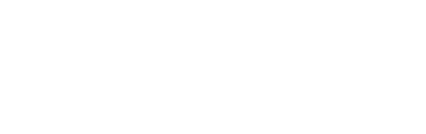 LITESTRUCTURES WHITE LOGO.png